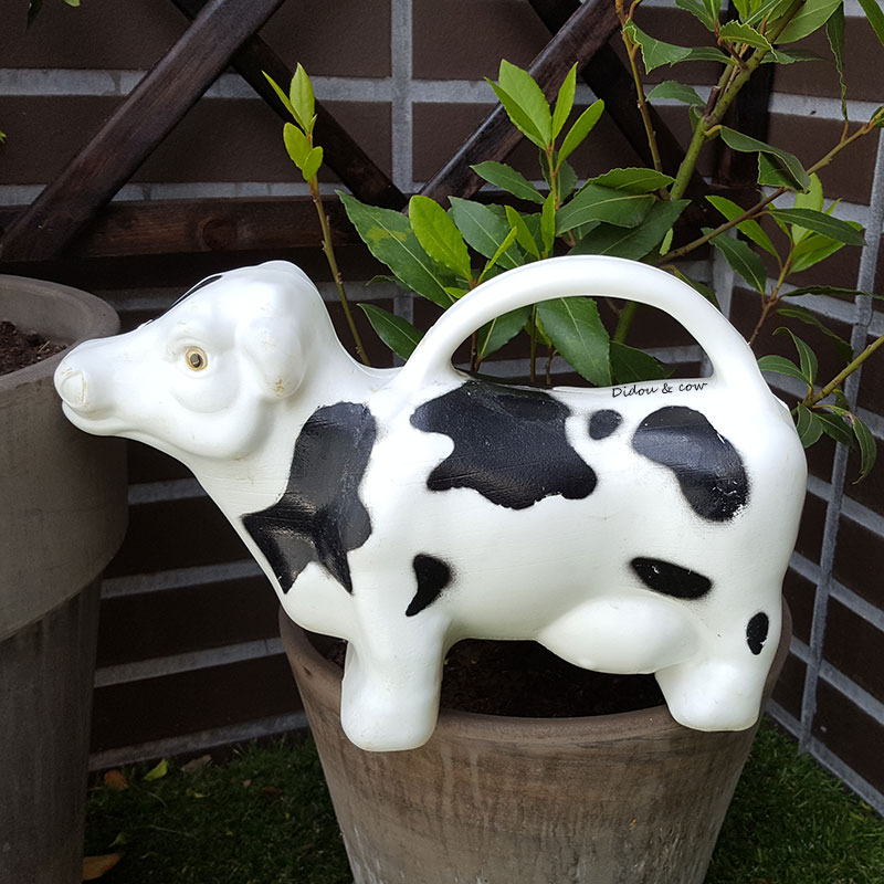 Arrosoir en forme de vache